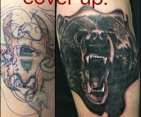 coverup bear aug 25 17