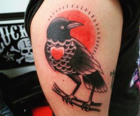 crow aug 24 17