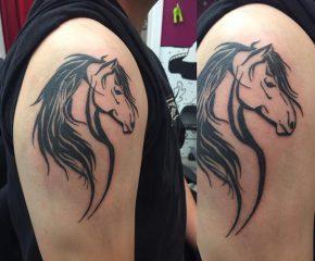 horse-0808
