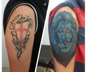 lion-coverup