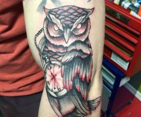 owl-0808