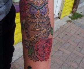 owl-oct8-copy
