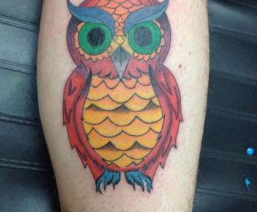owls-0808