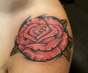 rose aug 24 17