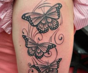 butterflies june 6 18