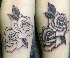 roses june 6 18