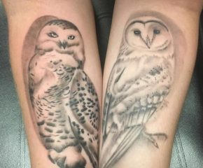 owls march 21 19