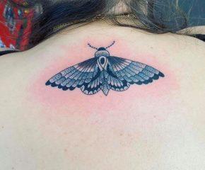 moth june 20