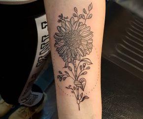 sunflower june 20