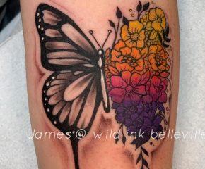 butterfly sept 18 20