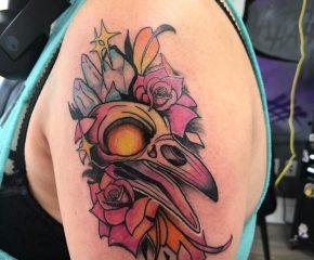 bird skull aug 4 21